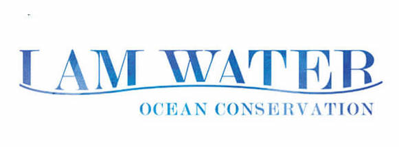 I AM WATER Foundation